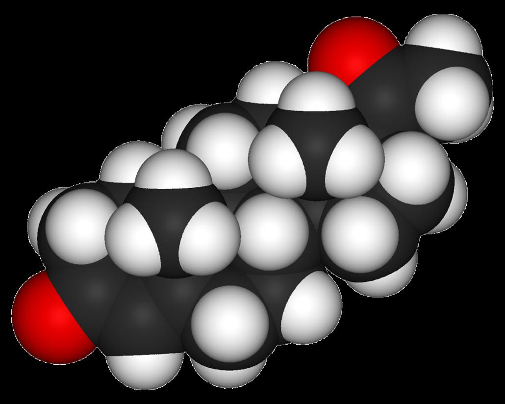 proteina de soja progesterona