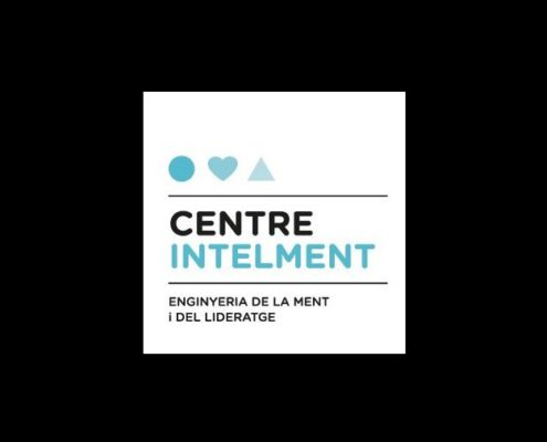 Centre Intelment